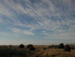 Oklahoma Prairie